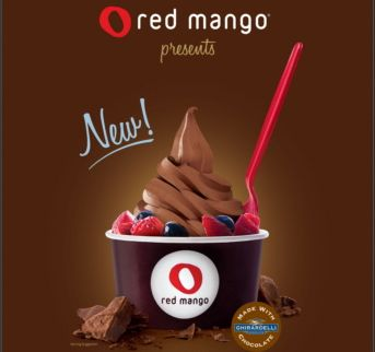 red_mango_dark_chocolate_frozen_yogurt