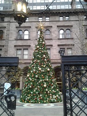 Xmas at the NY Palace Hotel